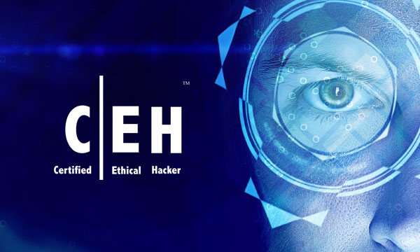 CEH-Certified Ethical Hacker Course in Hyderabad